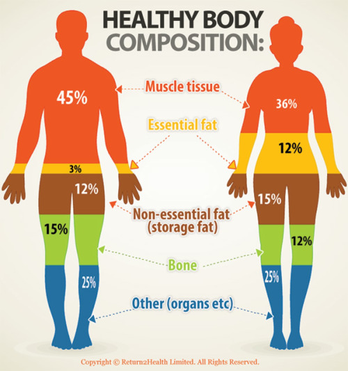 What Is A Healthy Body Fat 30